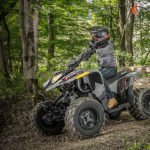 Polaris recalled Phoenix ATV